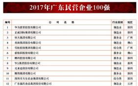 广东省工商联公布2017广东省百强民营企业榜单 9家民营企业跻身千亿级行列
