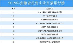 2019年安徽省民营企业百强排行榜