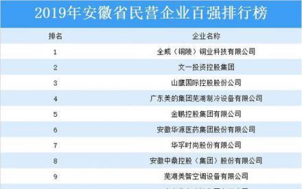 2019年安徽省民营企业百强排行榜_民营经济网